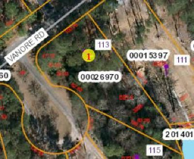 Residential Lots & Land For Sale: 113 Vanore Road