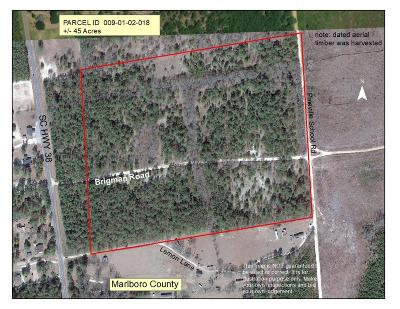 Residential Lots & Land For Sale: Brigman Road