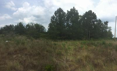 Residential Lots & Land For Sale: Trac 3 B Sycamore Farms