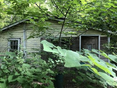Single Family Home For Sale: 143 Currie-Baptist Street