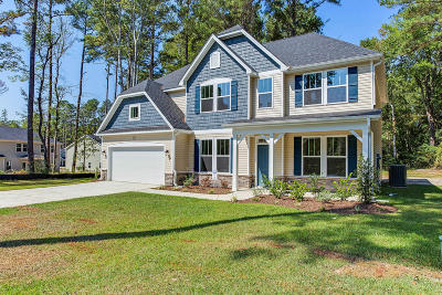 Moore County Single Family Home For Sale: 318 Glade Drive