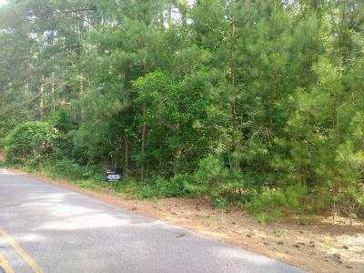 Residential Lots & Land Active/Contingent: 40 S Shamrock Drive
