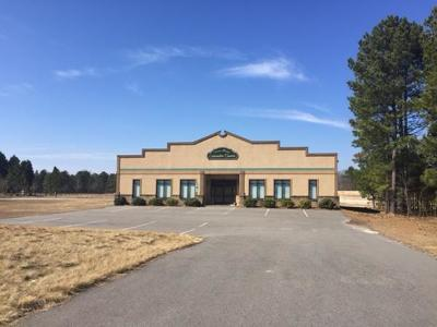 Moore County Commercial For Sale: 320 Macdougall Drive