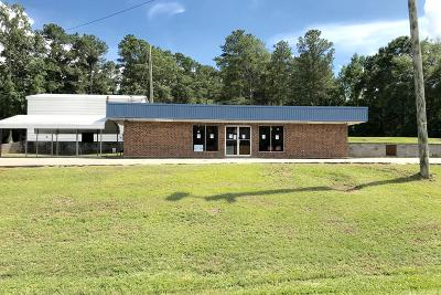 Commercial For Sale: 537 Highway 74 West