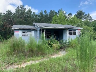 Single Family Home For Sale: 19320 Corbitt Road