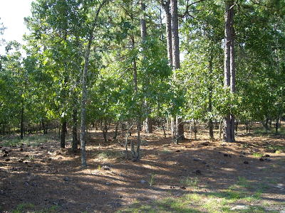 West End Residential Lots & Land For Sale: 107 Rector Drive