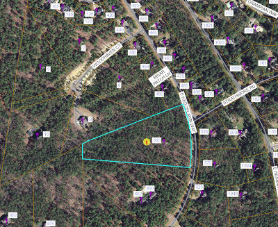 Southern Pines Residential Lots & Land For Sale: 550 E Hedgelawn Way