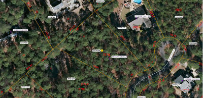 Southern Pines Residential Lots & Land For Sale: 149 Penn Carol Lane