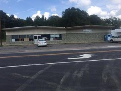 Robbins NC Commercial For Sale: $250,000