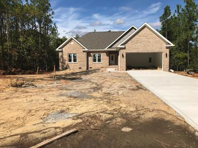 Moore County Single Family Home For Sale: 1960 Airport Road