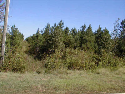 Residential Lots & Land Closed: Lot # 7 Quail Hill Drive