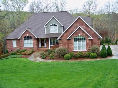 Rutherfordton, Bostic, Ellenboro, Forest City Single Family Home For Sale: 278 Ridgeview Drive