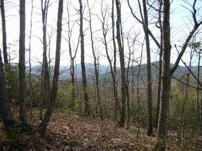Bostic NC Residential Lots & Land For Sale: $44,900