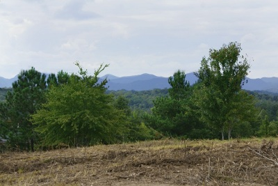 Hearthstone Ridge Residential Lots & Land For Sale: Lot 107 Casselberry Court #Lot 107