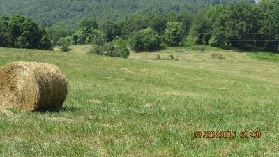 Bostic, Ellenboro, Forest City, Rutherfordton Residential Lots & Land For Sale: off 221 S Hwy #Hogan ro
