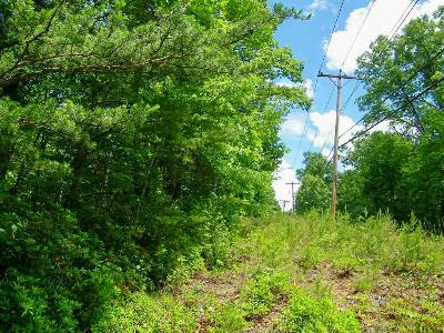 Riverbend Residential Lots & Land For Sale: Lot 173 Buffalo Shoals
