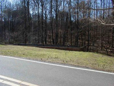 Residential Lots & Land For Sale: 241 Pearidge Rd.