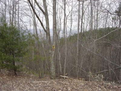 Yellowtop Mtn Estates Residential Lots & Land For Sale: 117 Big Rock
