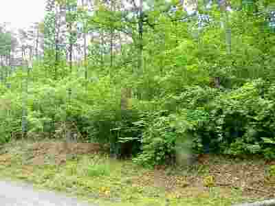 Riverbend Residential Lots & Land For Sale: Lot 115 & 135 Oppossums Road