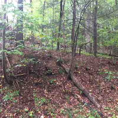 Lake Lure Residential Lots & Land For Sale: Lot 58 Luther Burbank Drive