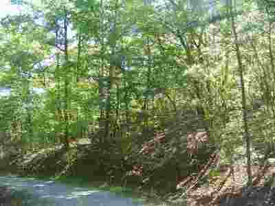 Polk County, Rutherford County Residential Lots & Land For Sale: Travelers Rest Ln #Lot 21