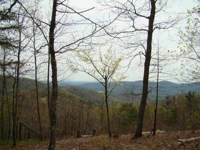Bostic NC Residential Lots & Land For Sale: $34,900