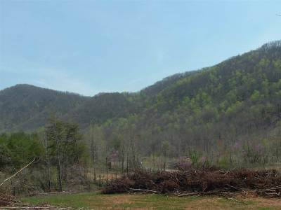 Rutherfordton, Bostic, Forest City, Spindale Residential Lots & Land For Sale: Painters Gap Road