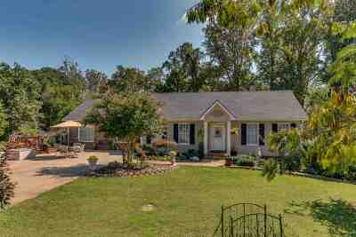 Rutherford County Single Family Home For Sale: 154 Still Meadow Dr