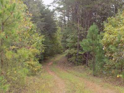 Rutherfordton, Bostic, Forest City, Spindale Residential Lots & Land For Sale: Big Island