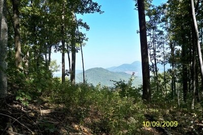 Yellowtop Mtn Estates Residential Lots & Land For Sale: Black Ridge Dr #Lots 81