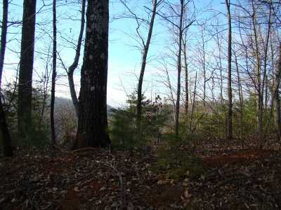 Residential Lots & Land For Sale: 78 Adirondack Ln