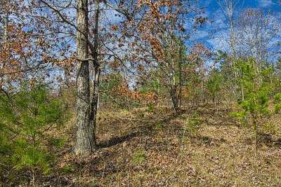 Hearthstone Ridge Residential Lots & Land For Sale: (Lot 176 Rev) Willowby Run #Lot 176
