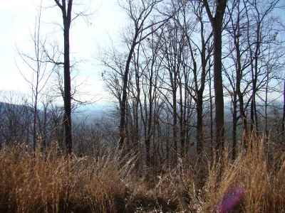 Yellowtop Mtn Estates Residential Lots & Land For Sale: 205 Side Drive