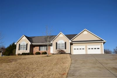 Rutherfordton Single Family Home Cont W/Due Diligence: 171 Hunters Trace