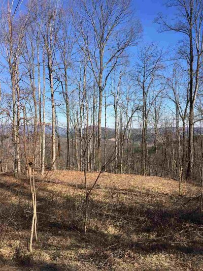 Summit Residential Lots & Land For Sale: Summit Parkway