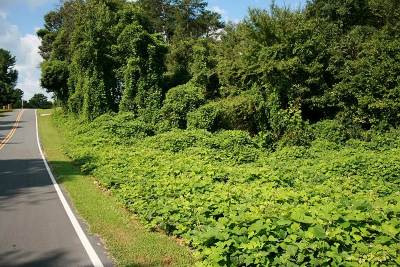 Polk County, Rutherford County Residential Lots & Land For Sale: Lot 6 Idlewood Lane