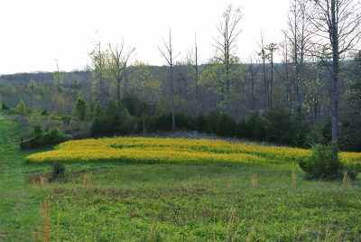 Rutherford County Residential Lots & Land For Sale: Us 221 South Hwy