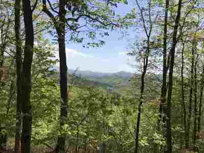 Golden Valley Estates Residential Lots & Land For Sale: Lot 17 Fire Tower Rd