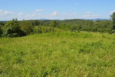 Rutherfordton, Bostic, Forest City, Spindale Residential Lots & Land Back On Market: 123 Faiths Place