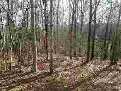 Polk County, Rutherford County Residential Lots & Land For Sale: Whispering Pines Circle Lot 13