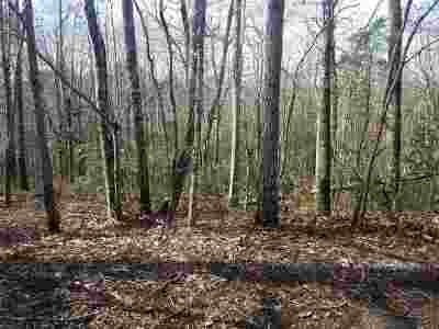 Polk County, Rutherford County Residential Lots & Land For Sale: Whispering Pines Circle Lot 5
