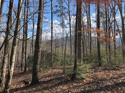 Lake Lure Residential Lots & Land For Sale: Kalmia Drive