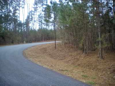 Clearwater Creek Residential Lots & Land For Sale: Creekside Circle