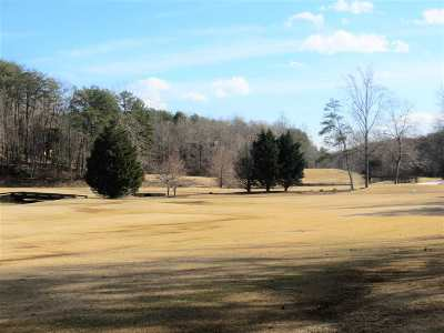 Lake Lure Residential Lots & Land For Sale: Summer Morning Ct Lot #10