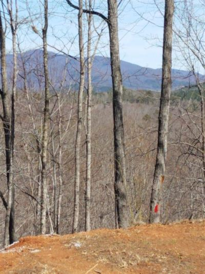 South Mountain Peaks Residential Lots & Land For Sale: Owls Ridge