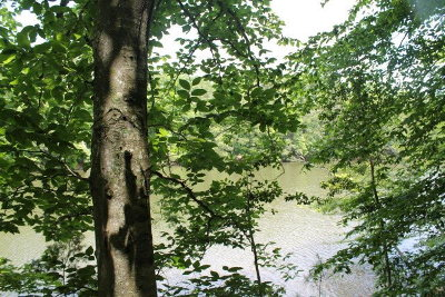 Brunswick County Residential Lots & Land For Sale: Lot 04 Barker Road