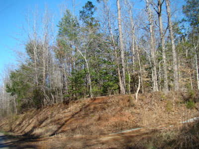 Brunswick County Residential Lots & Land For Sale: Tanner Town Road
