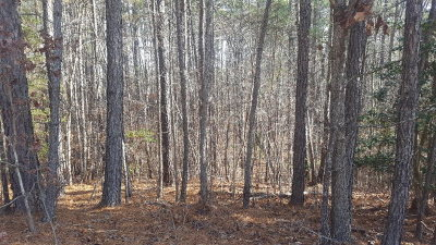 Bracey Residential Lots & Land For Sale: Waynes Court - Hicks Hill