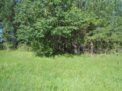 Brunswick County Residential Lots & Land For Sale: Christanna