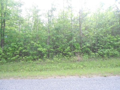 Brunswick County Residential Lots & Land For Sale: Piney Woods Road